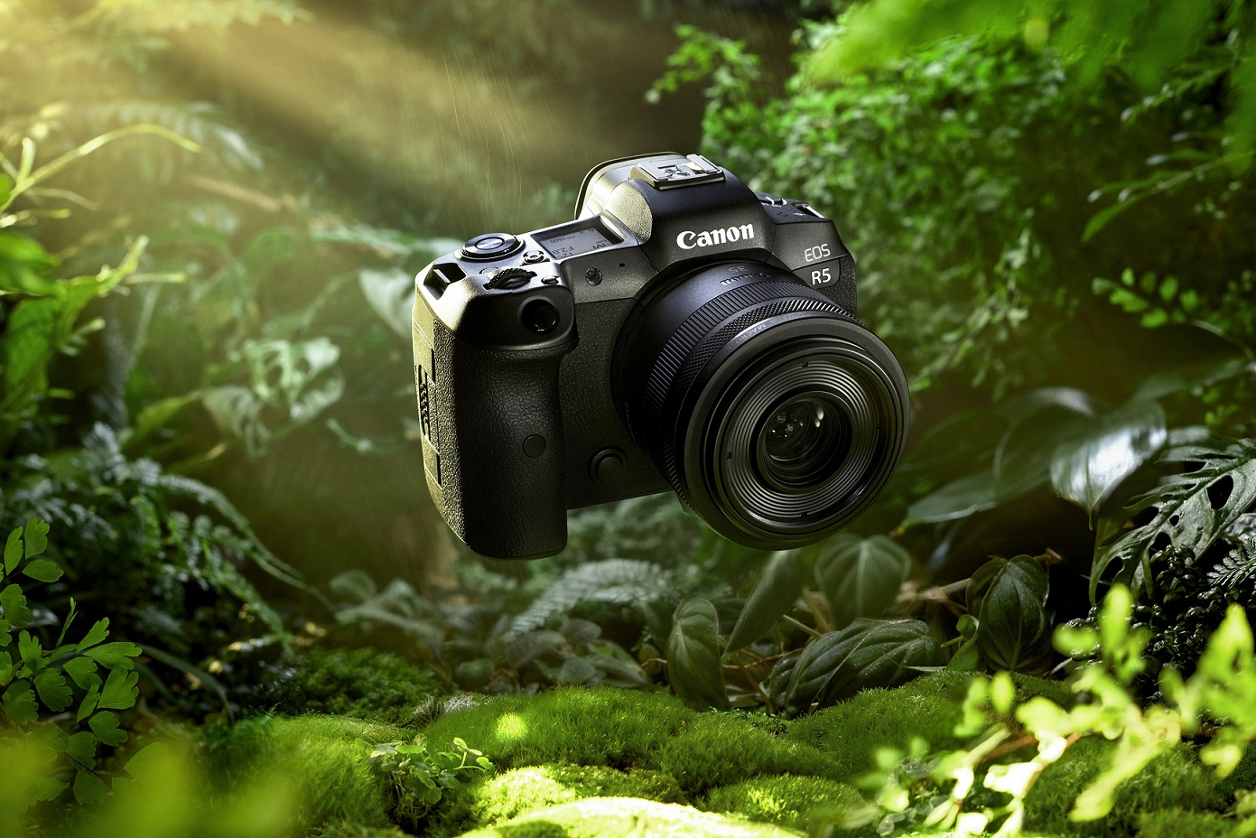 Canon ra mắt máy ảnh EOS R5, R6 và loạt ống kính mới marketingreview.vn